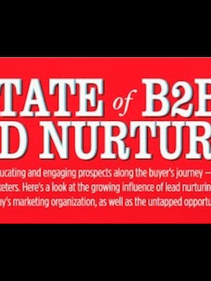 The State of B2B Lead Nurturing