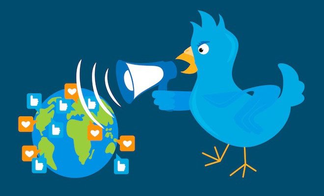 Twitter bird animation 660x400pxl