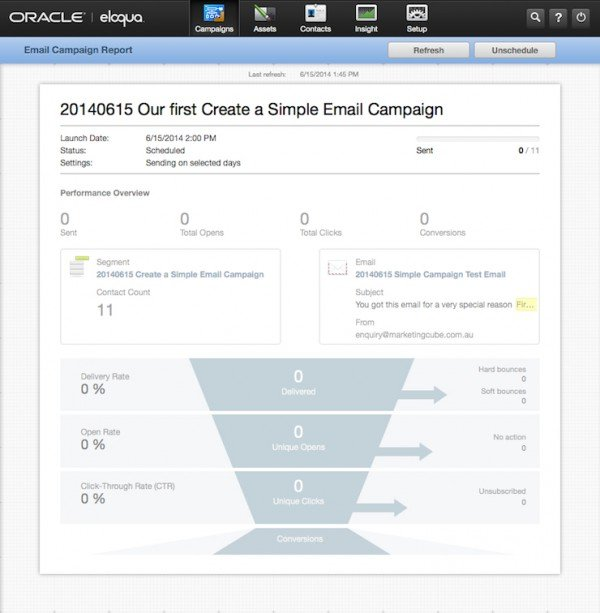 Simple Email Campaign BLANK Reporting Insight 600x613pxl