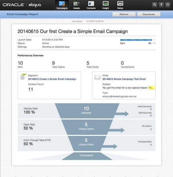 Simple Email Campaign COMPLETE Reporting Insight 600x611pxl